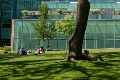 Students sitting under trees on campus